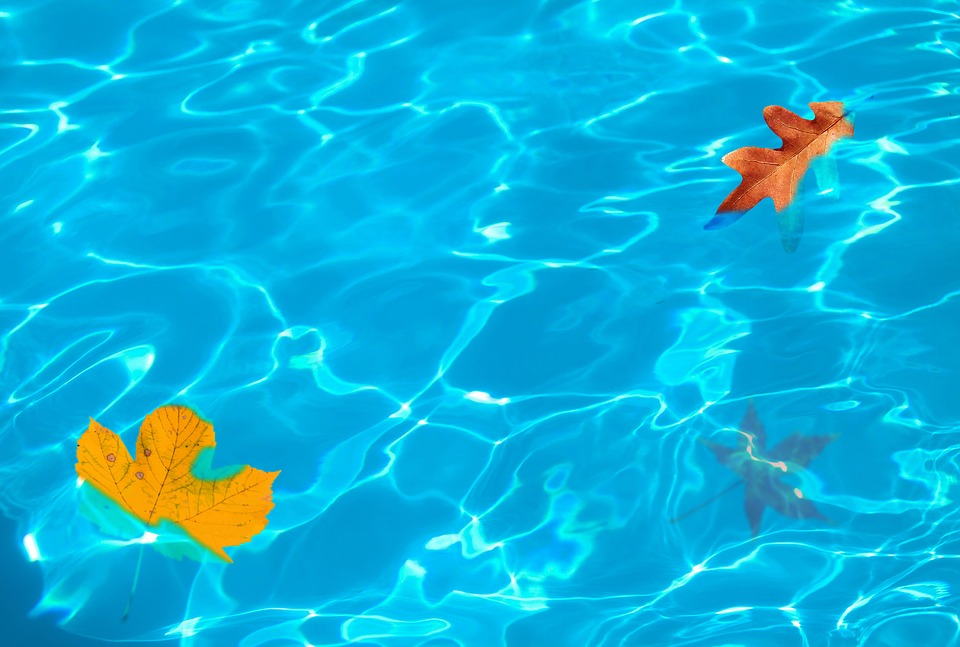 Guide To Fall Pool Care