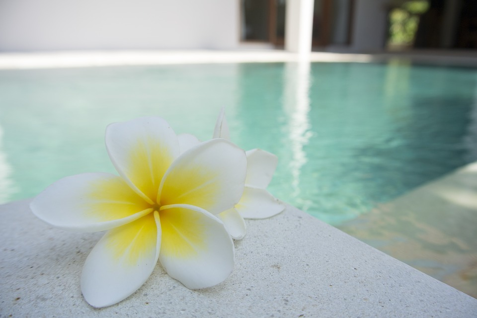 5 Summer Pool Care Tips