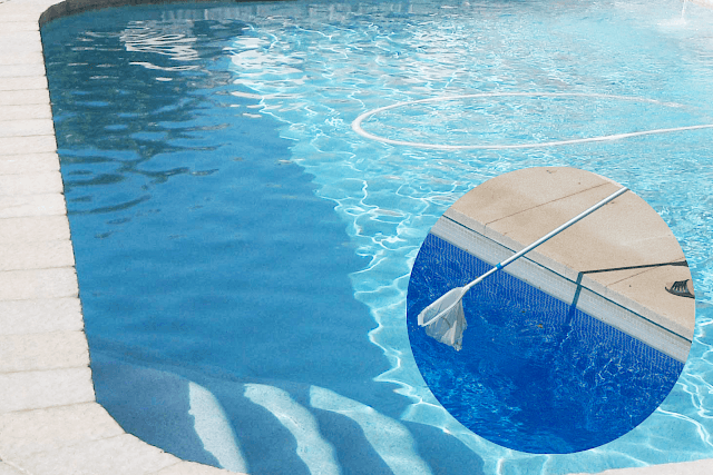 The 7 Most Essential Pool Supplies
